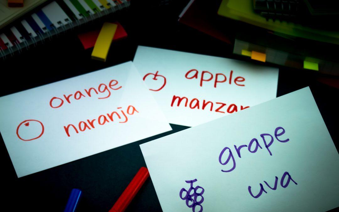 Ensino Bilíngue e Idiomas (Inglês e Espanhol)